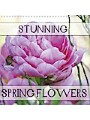 9781325351879 - Gisela Kruse: Stunning Spring Flowers (Wall Calendar 2019 300 ? 300 mm Square) - Portraits of spring flowers to brighten your mood. (Monthly calendar, 14 pages ) - Livre