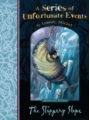 9781349425907 - Lemony Snicket: The Reflecting Glass : Professional Coaching for Leadership Development - Book